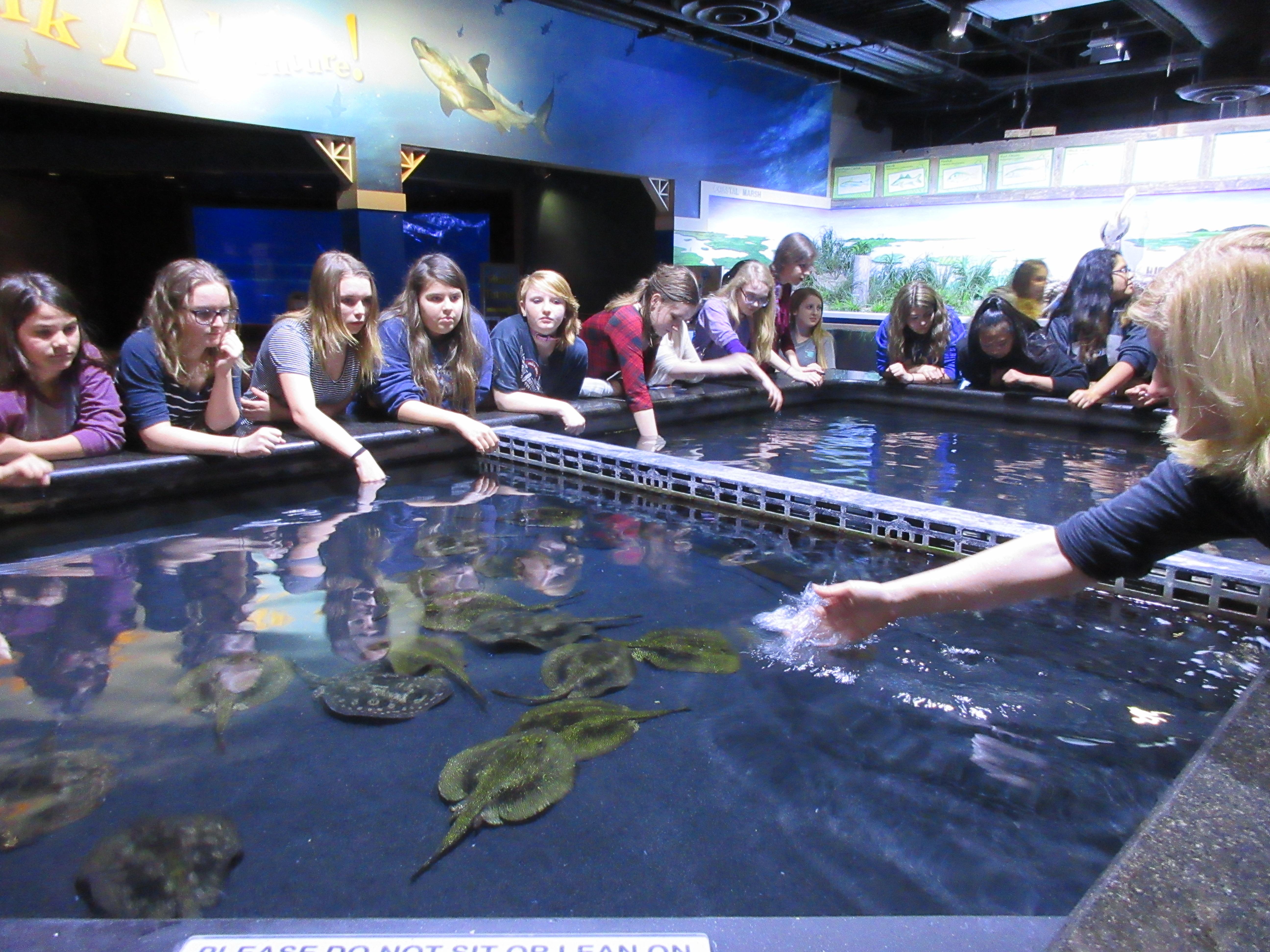 Eufaula GEAR UP seventh graders tour the Oklahoma Aquarium ...